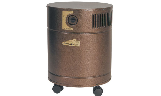 10 Best Air Purifiers For Cigarette Smoke Removal And